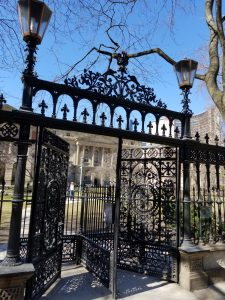 Cow gate at Osgoode Hall in April 2018