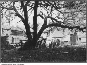 """Ramshackle housing off Bay St, across from Old City Hall, in """"The Ward"""" in 1908. City of Toronto Archives, Fonds 1244, Item 3101."""